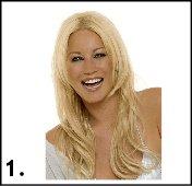 Picture Quiz Sample 01